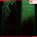 Líquidos penetrantes fluorescentes magnaflux y sus niveles de sensibilidad